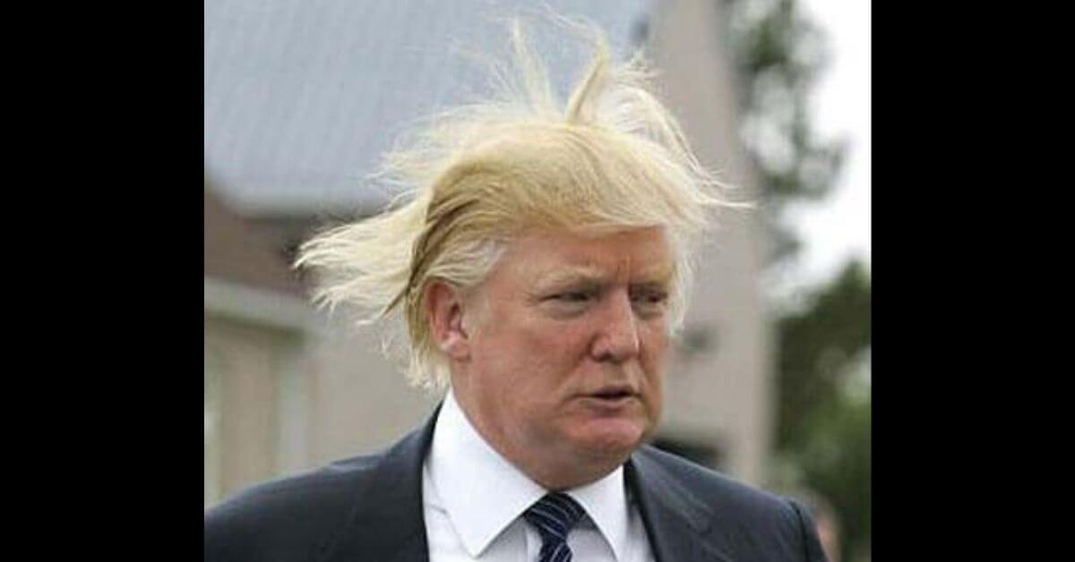 A photograph of Trump with Crazy Hair