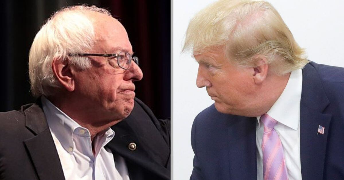 Every Democratic candidate still beats Trump, new national poll shows