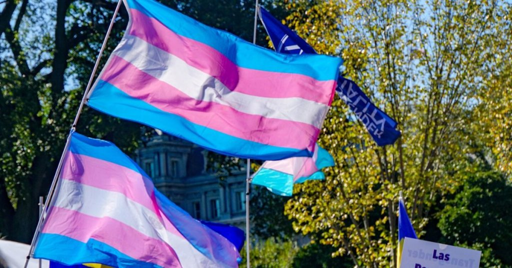 A photograph of Transgender Pride flags waving in the wind