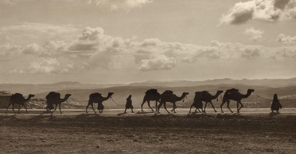 A photograph of a line of loaded camels walking on a desert road