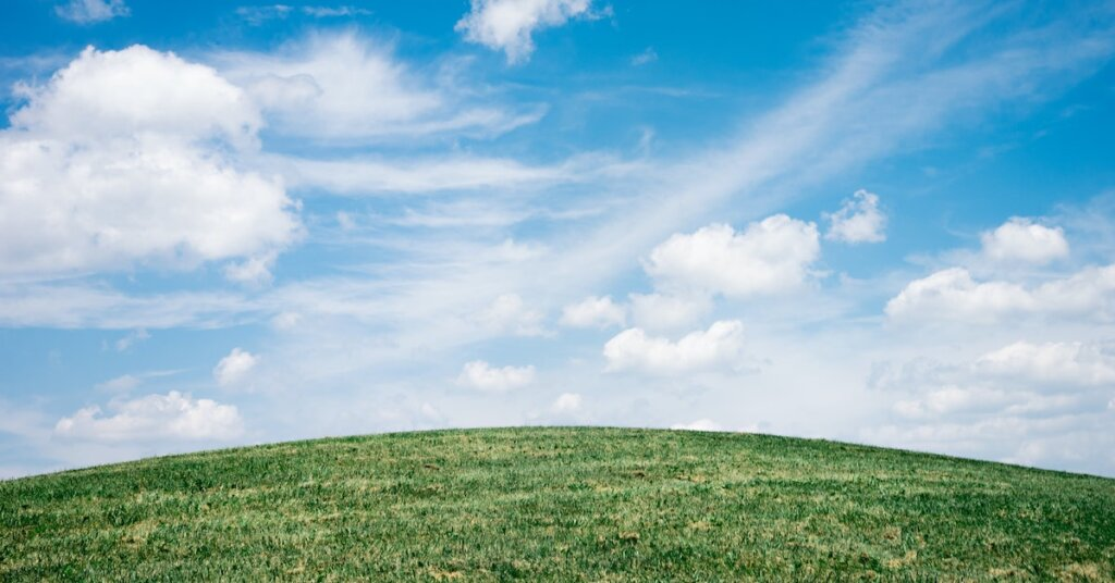 Bright clean airy sky above green grass.