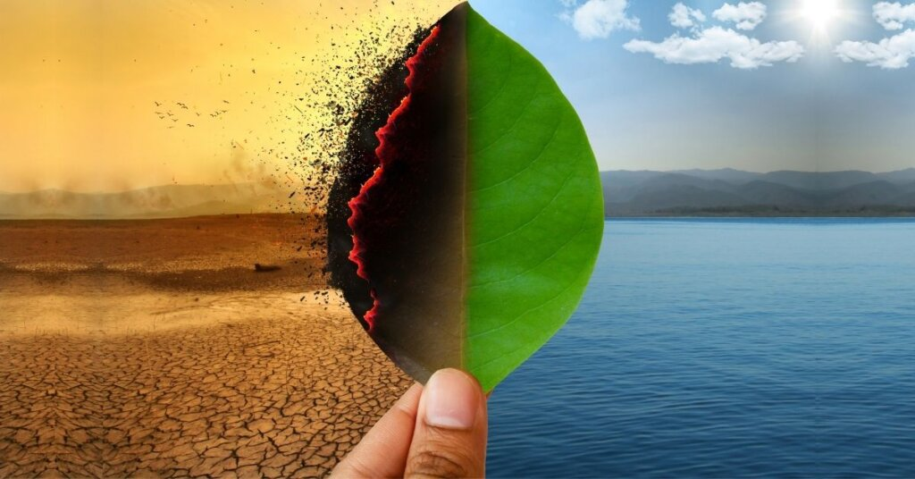 Visual depiction of climate change